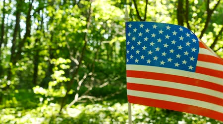 4K.American Flag in forest green background, dolly shot