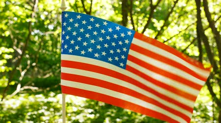 4K.American Flag in the forest green background, sunshine beams