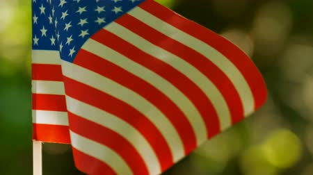 4K.American Flag in forest green background, close up shot