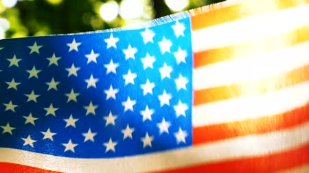 American Flag Forest green background