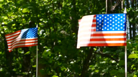 Two American Flags in Slow Motion Green leaves background