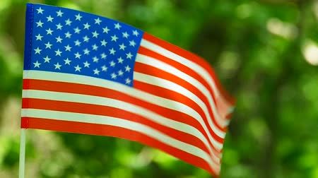 American Flag in slow motion. Forest green leaves background, close up Стоковые видеозаписи