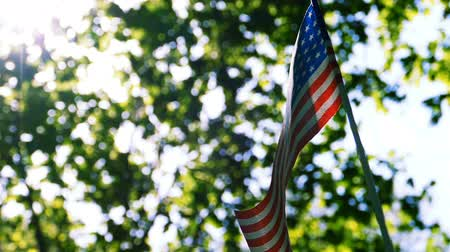 American Flag moves in wind forest green leaves background