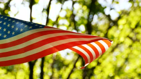 stars and stripes : 4K.American Flag