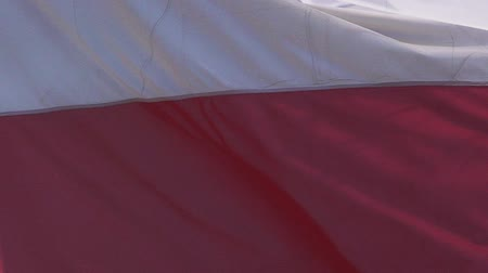 fãs : Polish Flag Waving in the Wind, Slow Motion Stock Footage
