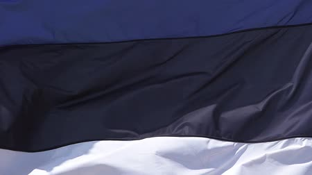 fãs : Estonia Flag Waving in the Wind, Slow Motion
