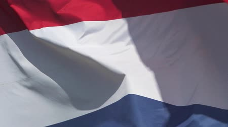 fãs : Netherlands Flag Waving in the Wind, Slow Motion