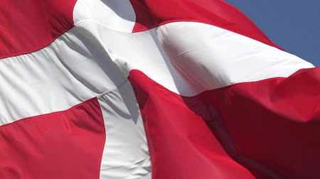fãs : Denmark Flag Waving in the Wind, Slow Motion