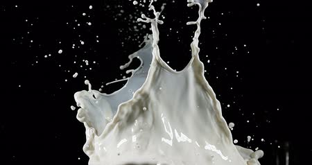 pour out : Exploding Milk against Black Background, slow motion 4K Stock Footage
