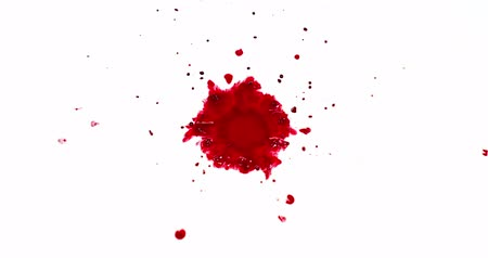 czerwony : Blood Dripping against White Background, Slow Motion 4K Wideo