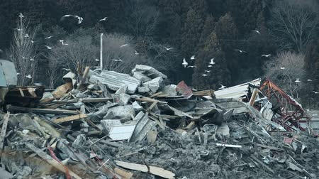 por que : Fukushima Japan, city destroyed by tsunami Stock Footage