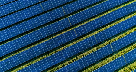 саженцы : Solar panels in aerial view