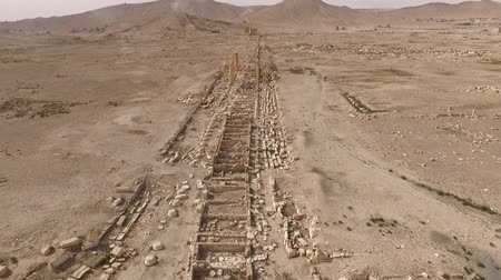 archeological : aerial view of the archeological site of palmyra in syria (very rare)