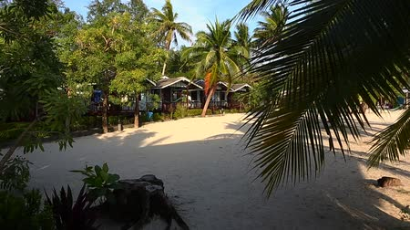 faház : Bungalows and palm trees on a tropical beach Stock mozgókép