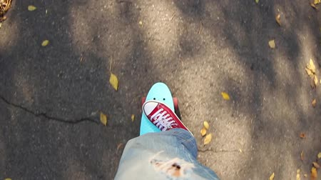 penny : Feet on blue plastic penny skateboard with pink wheels on the autumn road.