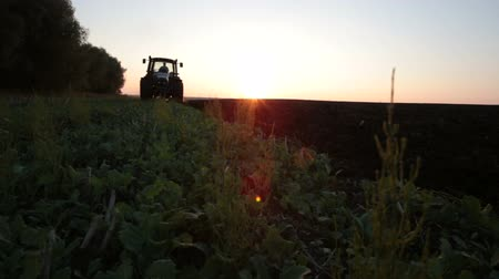 plowed land : Tractor plowing the black earth plow field at sunset overgrown with weeds