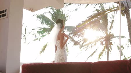 espartilho : Bride back straightened with veil and watching the sunset through the palms Stock Footage