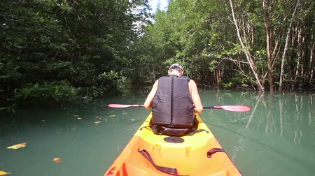 kayak : elderly man kayak rowing kayak on flat azure expanse among the mangroves Stock Footage