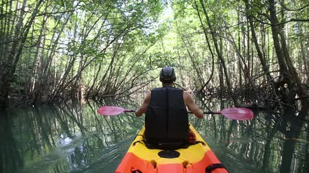 mangue : elder man boating in kayak in lagoon among mangrove roots and trees