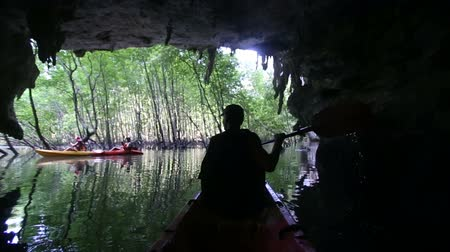 mangue : elder strong man rows kayak  out of grotto into mangrove wood