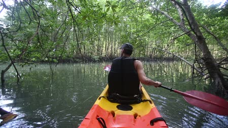 güçlü : strong elder man rows kayak with paddles along river among mangrove trees Stok Video