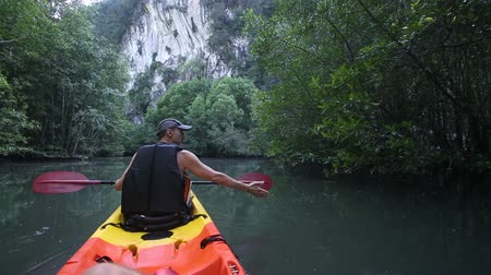 zadnice : old man in life-vest back-side view paddles on kayak to cliff among mangrove jungle