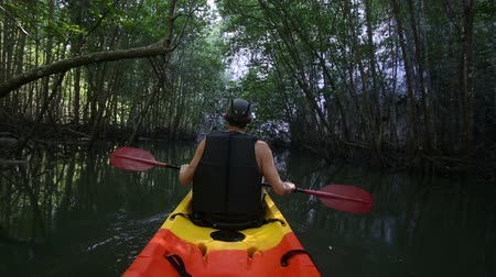 zadnice : old man in life-vest back-side view paddles on kayak down river among dark mangrove jungle Dostupné videozáznamy
