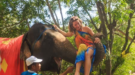 onto : NHA TRANG, KHANH HOA  VIETNAM - SEPTEMBER 28, 2015: Blonde girl tourist takes seat onto elephants trunk to ride in tropical park on September 28 in Nha trang Stock Footage