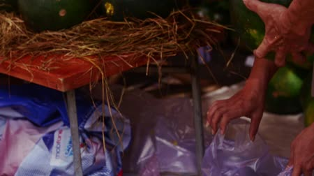 grawerowanie : NHA TRANG, KHANH HOA  VIETNAM - JANUARY 26, 2017: Closeup man takes painted colourful watermelon from heap puts to customer bag for Vietnamese new year TET on January 26 in Nha Trang Wideo