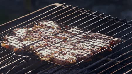 salya : closeup mouth-watering fragrant delicious smoking hot barbecue roasted in darkened grate on open flame