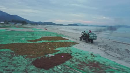 sand lia : NHA TRANG  VIETNAM - JUNE 24 2017: Aerial view above homemade lorry driving with algae sacks along long wet sand beach at sunset behind clouds on June 24 in Nha Trang