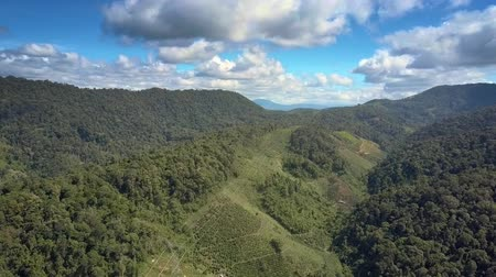 ridge line : pictorial upper panorama boundless tropical highland with overhead power lines stretching along green hill ridges Stock Footage