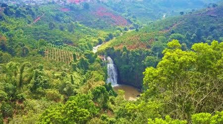 çiftlik : waterfall among fresh rainforest and coffee fields Stok Video