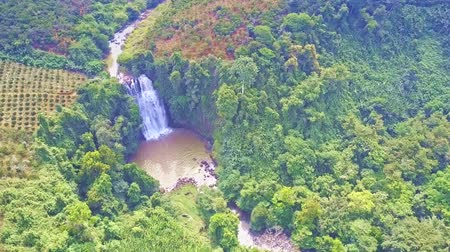resfriar : drone flies to waterfall streaming from clayee river among jungle