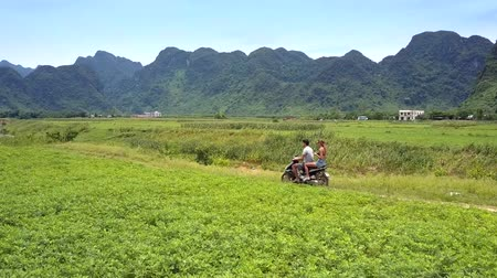 mobilet : blond girl and guy ride scooter along river past field