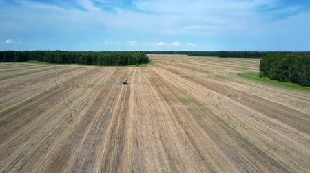 recentemente : aerial boundless harvested field under blue sky