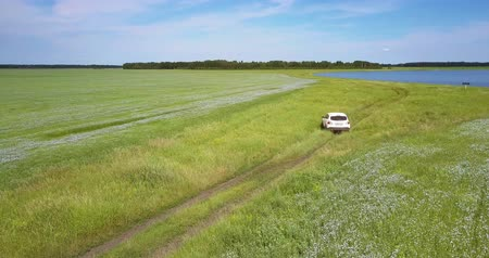 trigo sarraceno : car turns back on grass from lake among fields