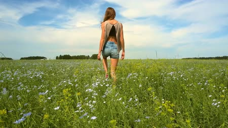 trigo sarraceno : backside view girl walks among buckwheat flowers