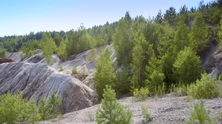 old pit : motion above forest growing at old clay quarry side against sky Stock Footage