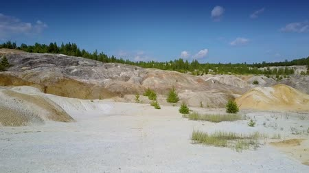 old pit : old clay quarry stony slopes against distant forest Stock Footage