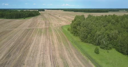 recentemente : flycam descends to harvested field near forest with glade