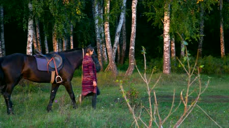 kaštanová : side view woman leads horse under bridle by birches