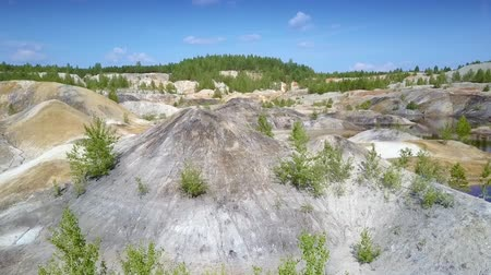 земля : rare small trees and bushes on clay pit slope tops