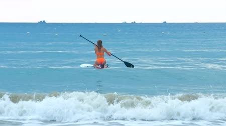 surfer paradise : back view girl paddles board sitting on knees to open ocean