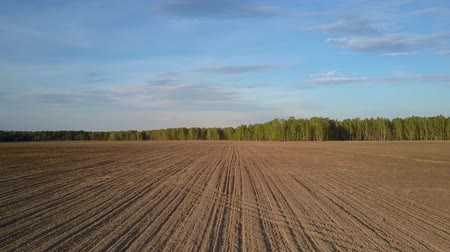 camera rotation : camera removes from forest above field with tractor traces Stock Footage
