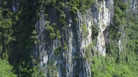 bizarre : motion along grey white stony cliff with plants nearby