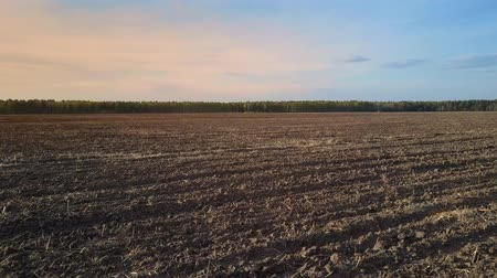 tillage : plowed field with straw remnants intended for crop rotation