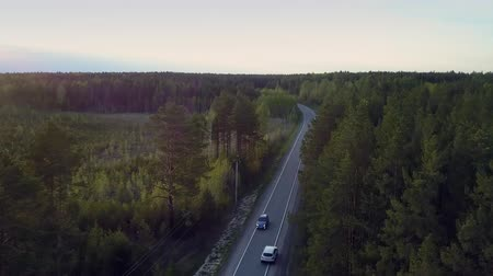 dark green : aerial view empty way and driving car among evergreen forest Stock Footage