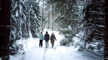 doldurmak : people walk along winter forest filled with trees