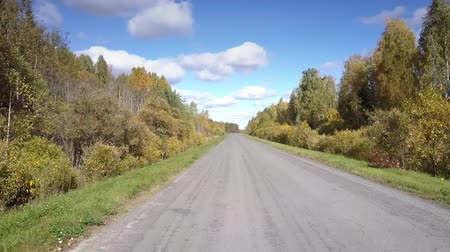 wayside : beautiful close flight over empty asphalt road with green grass and bush hard shoulders among autumn birch forests